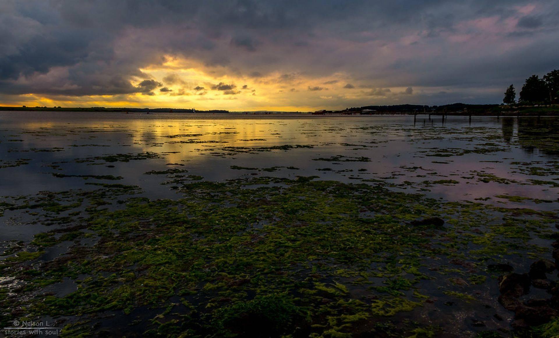 Aftenstemning ved Roskilde fjord