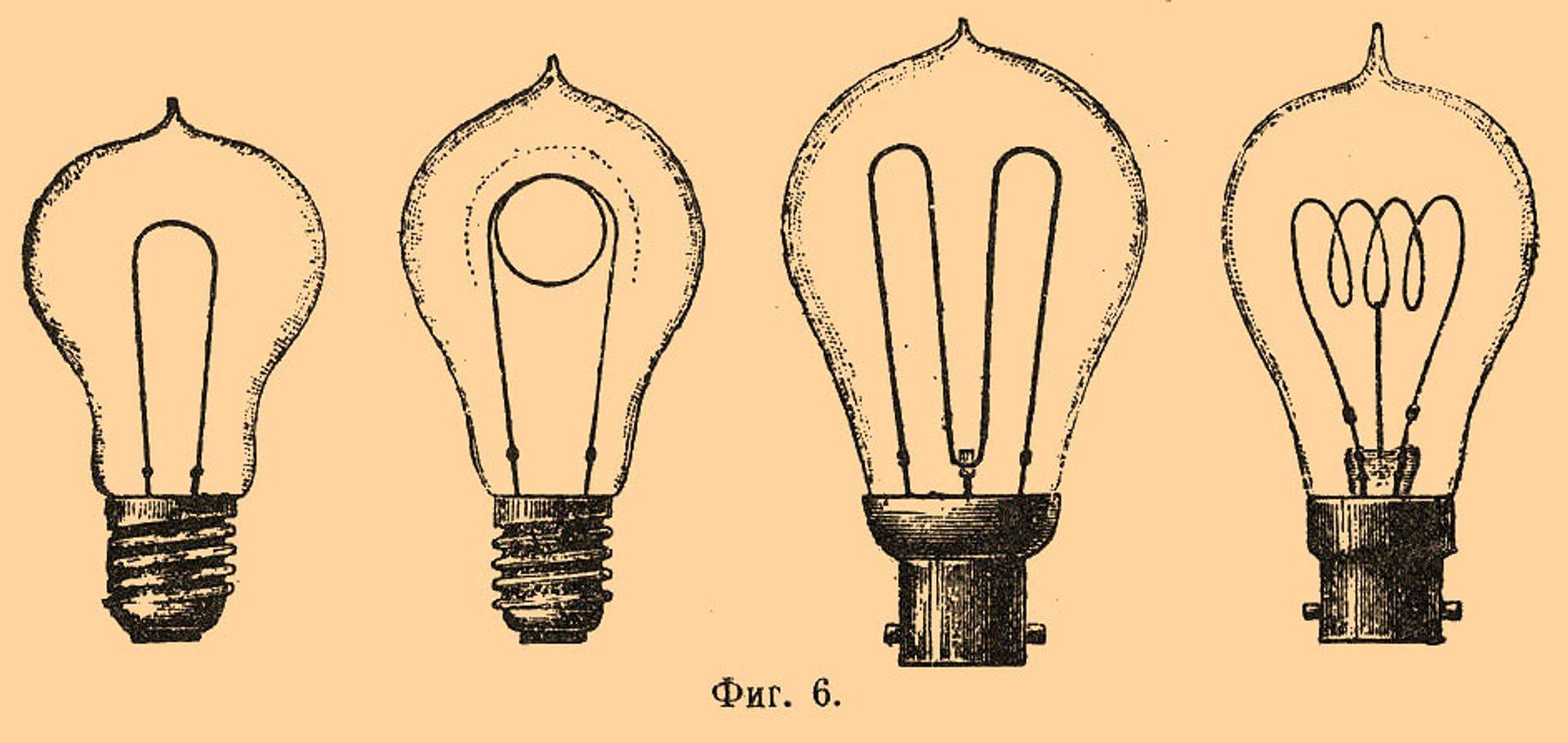 Different styles and types of bulbs
