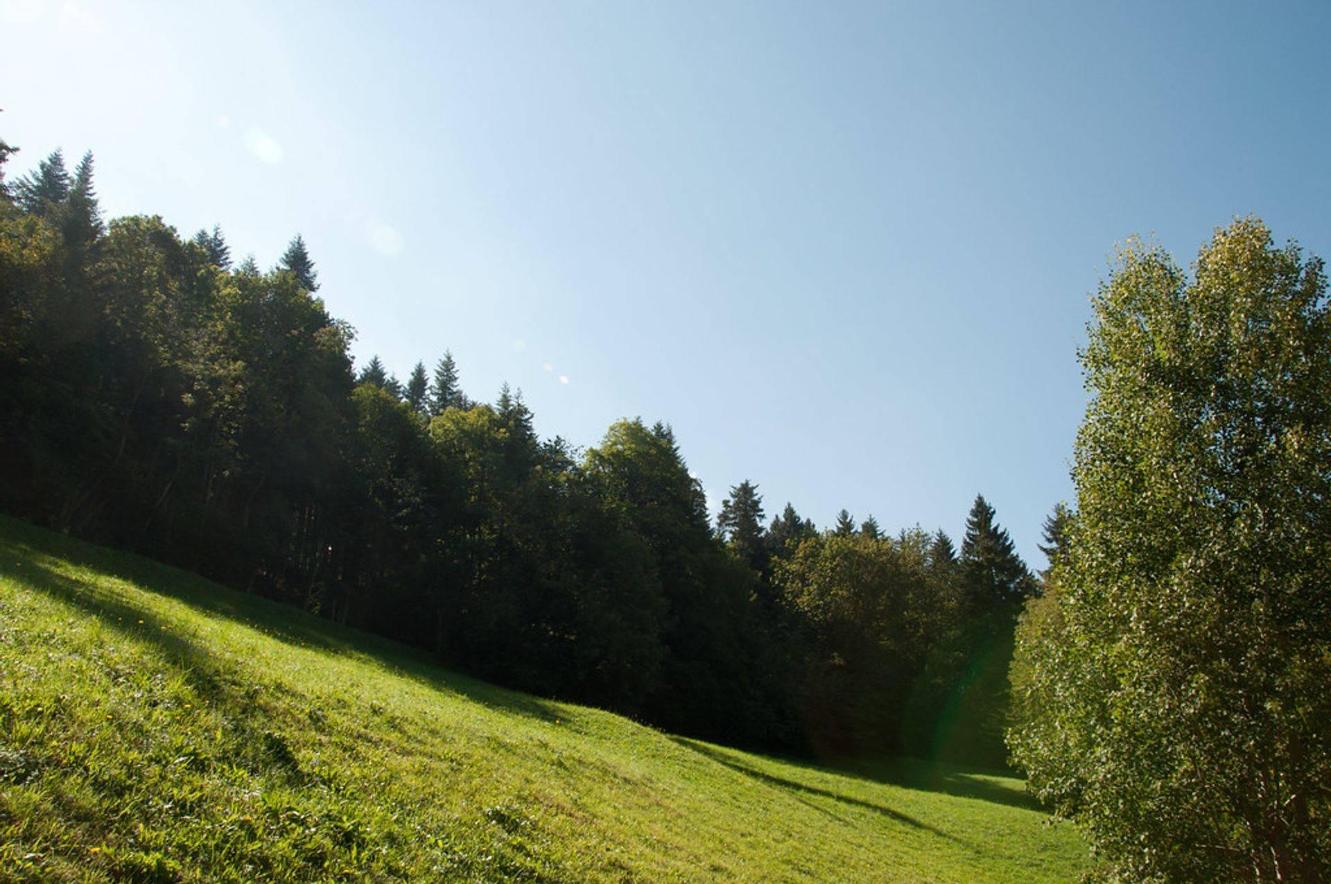 Espaces Verts, Parcs