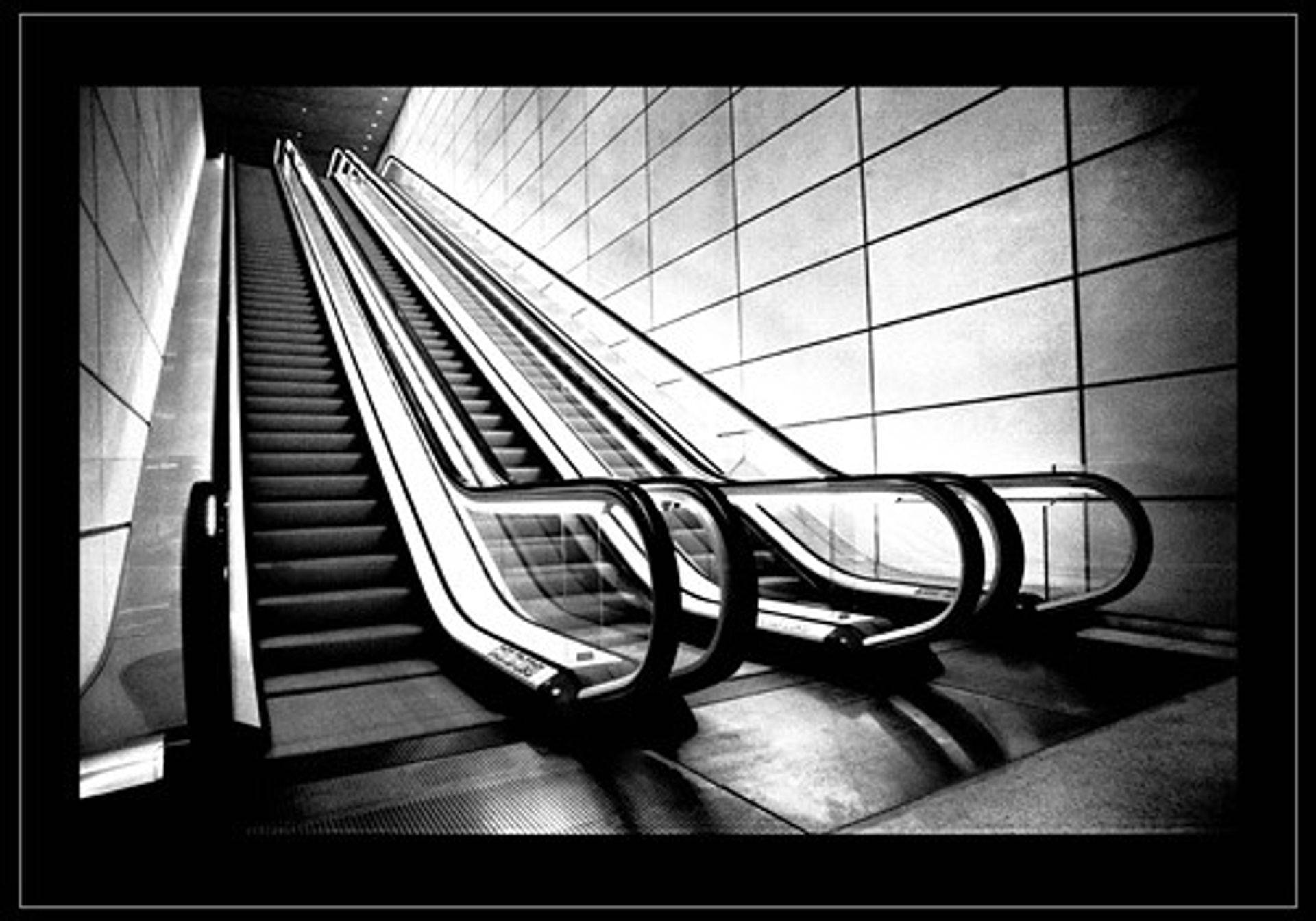 dark escalator to knowledge