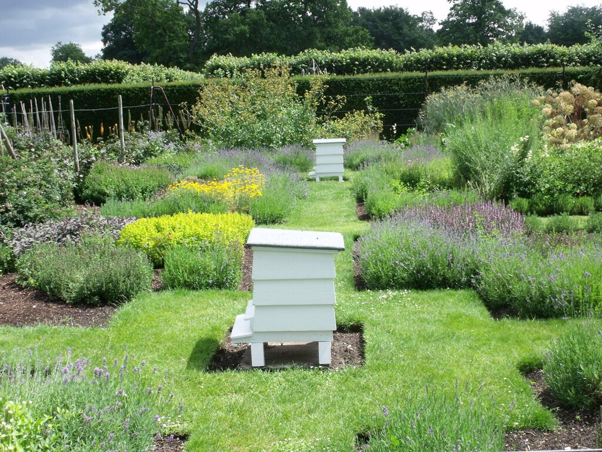 Hobbie Beekeepers