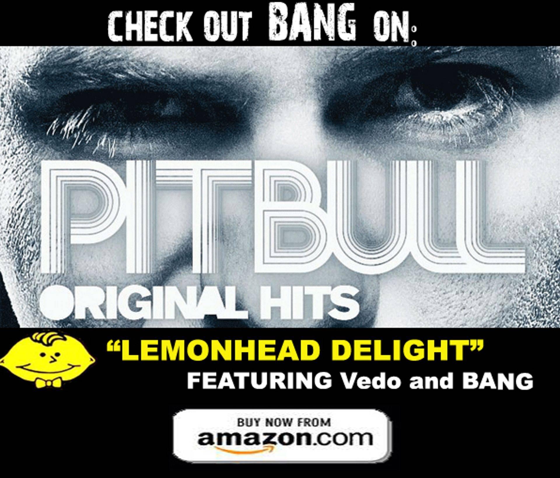 """""""Pitbull/BANG"""""""