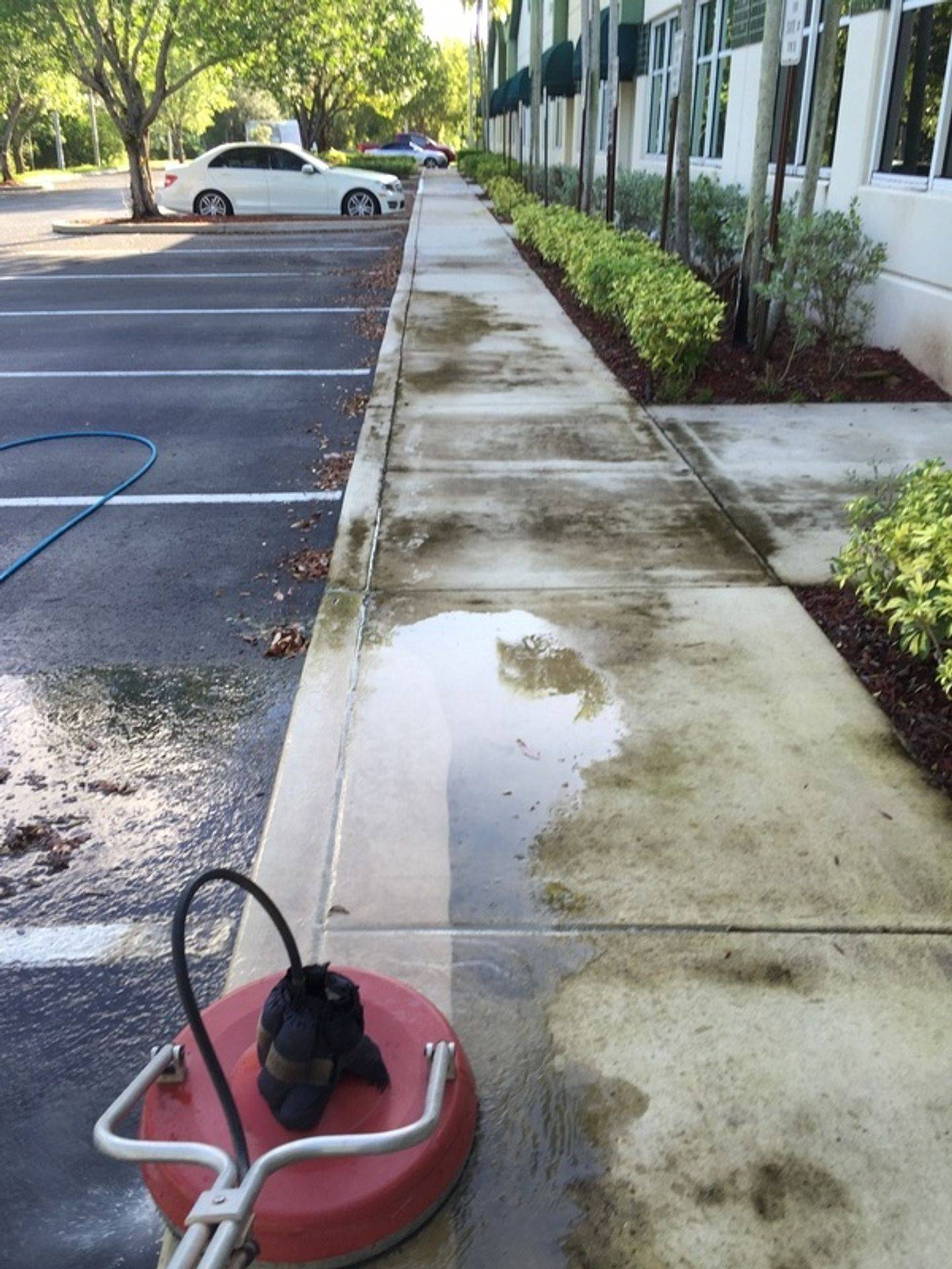 Commercial sidewalk Pressure Cleaning, Weston FL.