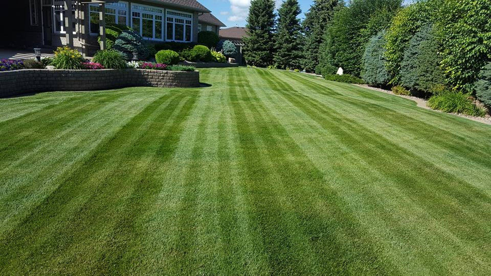 residential customer lawn
