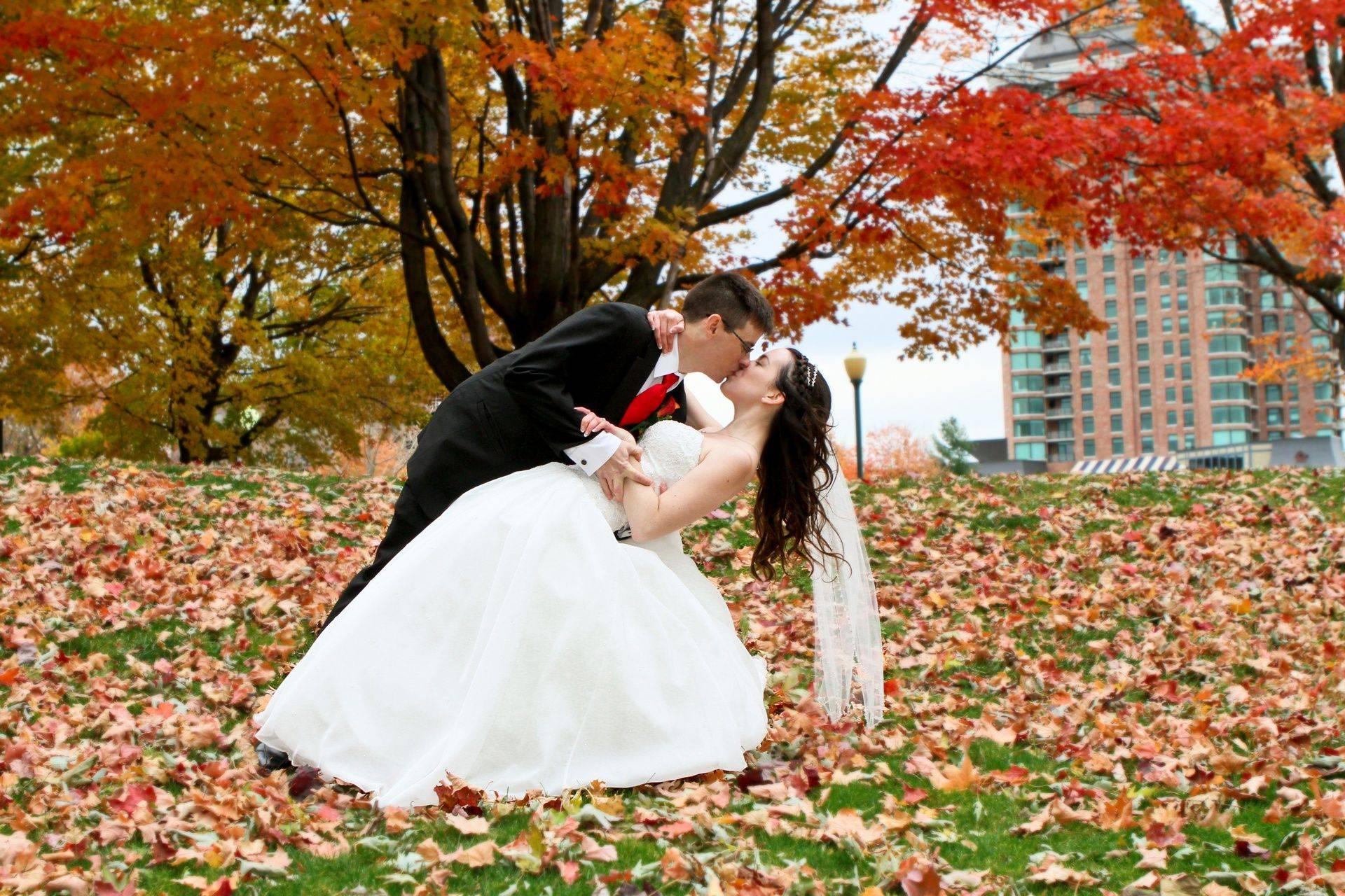 Brockville wedding photographer, Hardy Park Brockville Ontario, vertigo productions photography