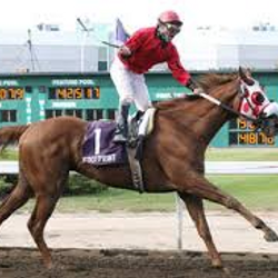 GOLD CASE's son FOOTPRINT winning the $300,000 Canadian Derby[G3]