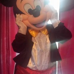 Mickey Mouse Costume Rental He is here right from Walt Disney World