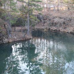 Crystal Clear Spring Fed Pond