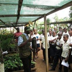 Visita de Estudo ao viveiro da Direção das Florestas