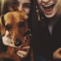 sirens love Franklin the dog!