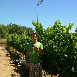 Experimental Campaign in Vineyard, Palma de Mallorca 2012