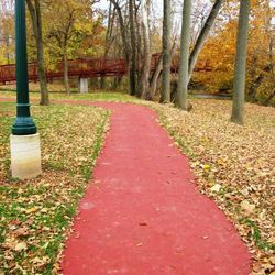 Recreation Trails