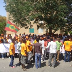 Oromo Refugees in Egypt demonstrating in front of the UNHCR office in Cairo (09/06/2013)