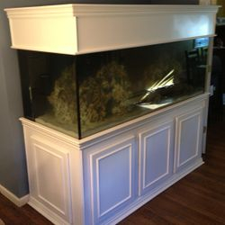 "255 Gallon 72"" x 30"" Contemporary. RJ'S Aquarium Stands"