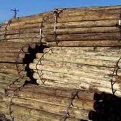 Pressure Treated Wood Post