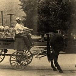 Joe Cherico & his fruit wagon, New Bethlehem.