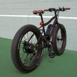 fat bike 48v 500w