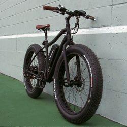 electric fat bike vancouver