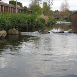 Munn's Pool 3