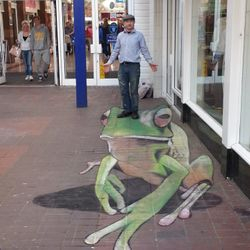 mural streetart frog anamorphic 3D illusion giant