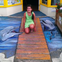 anamorphic art dolphin chalk