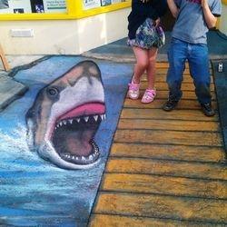 chalk art anamorphic 3D drawing shark