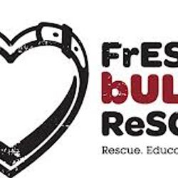 Fresno Bully Rescue Security