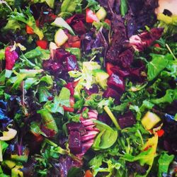 Our amazing organic Salads Tossed in our House dressing!