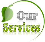 Lawn Care & Landscaping Services WNY