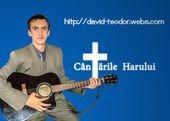 http://www.david-teodor.webs.com/
