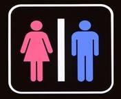 Can you catch Ebola through a toilet seat?