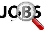 SECC911 Jobs Link
