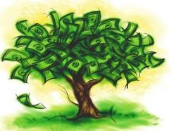 Donation Tree, click on our link below to donate to SmallCraft