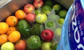 Diet, Nutrition, Meal Plans, Registered Dietician