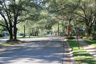 Keep Carrollwood beautiful!