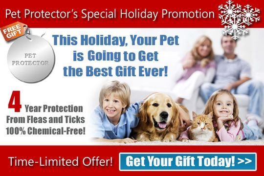 Pet Protector Flea, Tick and Mosquito Protection