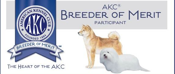 AKC Breeder Of Merit, Shiba inu, Coton de tulear,puppies