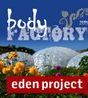 Eden project, Body fcatory, Face painting, face painter Cornwall, Penzance, Truro, Newquay, Helston
